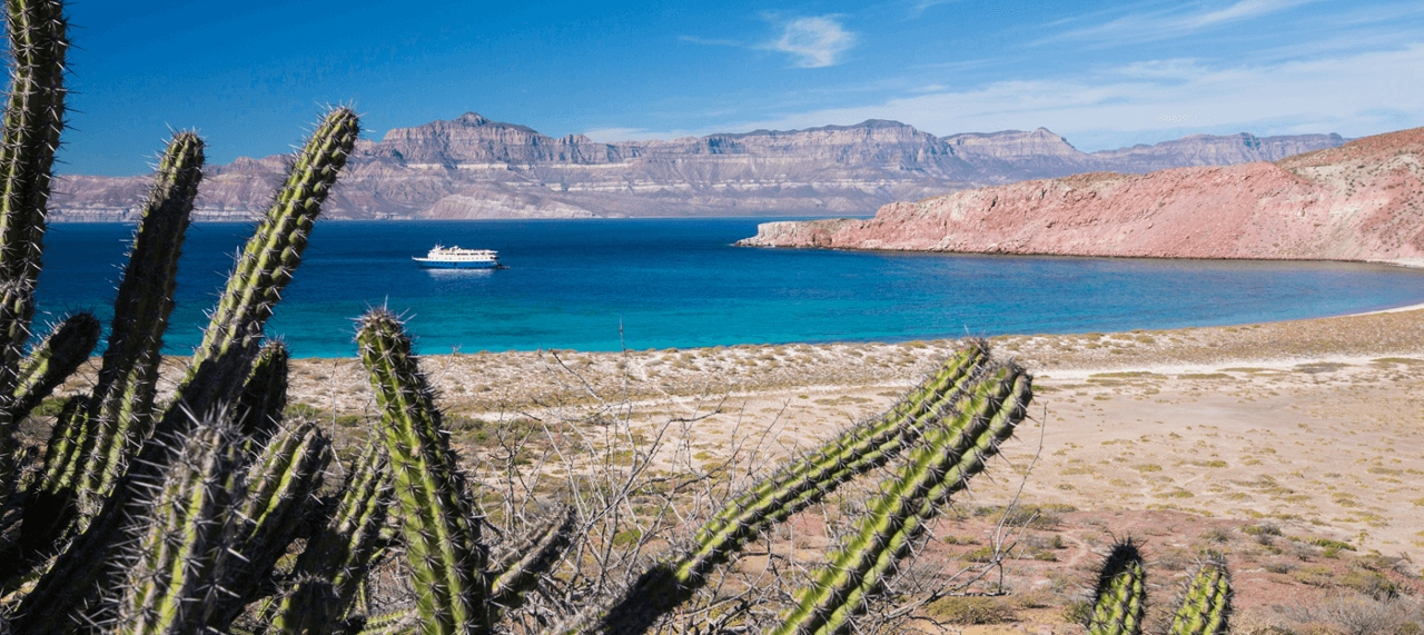 Mexico's Sea of Cortes welcomes Un-Cruise Adventures