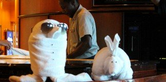 Learn to fold towel animals on Royal Caribbean Explorer of the Seas.