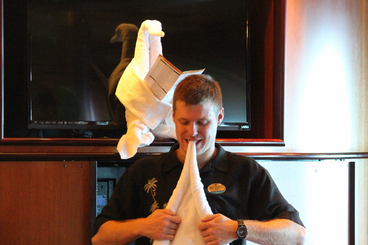 Learn how to fold towel animals on Explorer of the Seas.