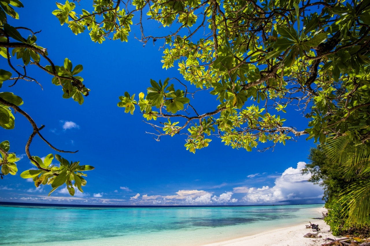Back Beach on Panasesa Island is now open to cruise travellers on P&O.