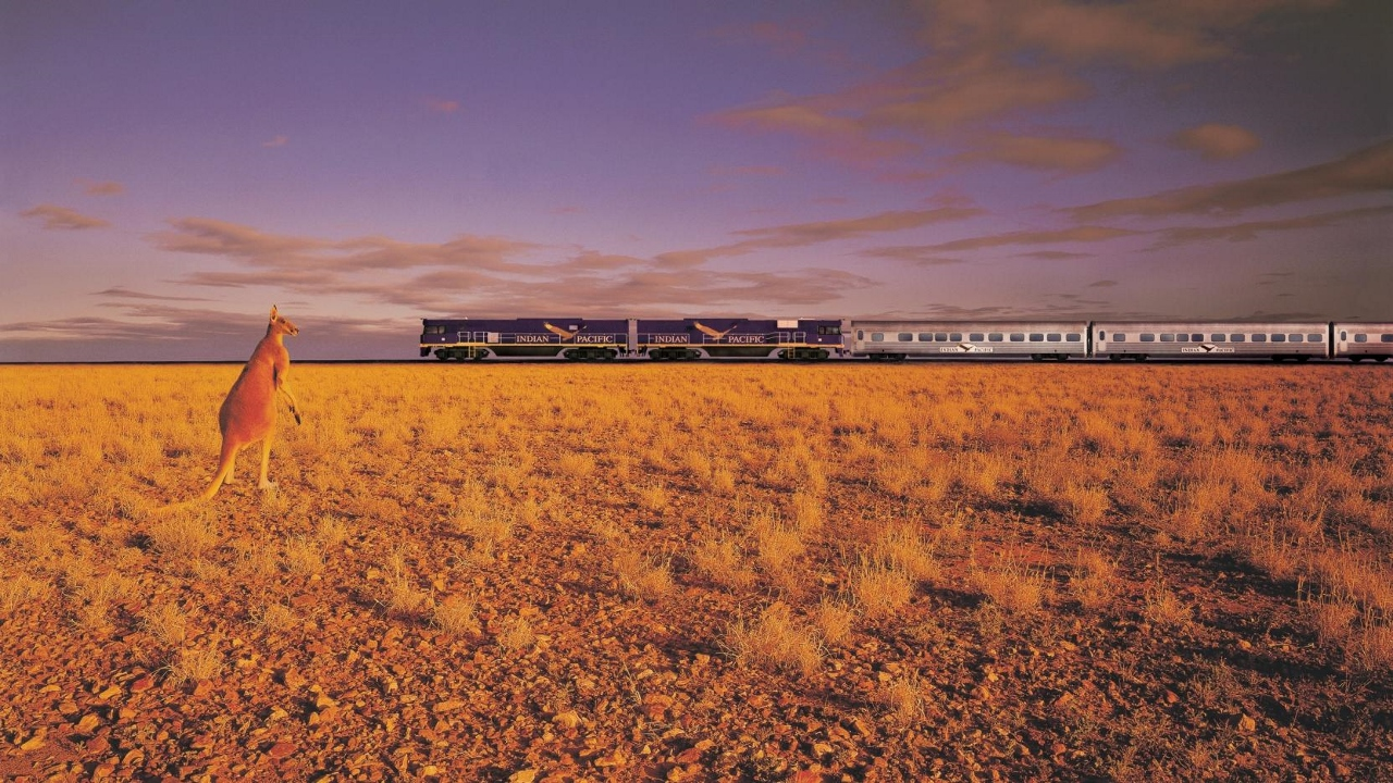Combine a rail journey across Australia on the Indian Pacific with your cruise holiday.