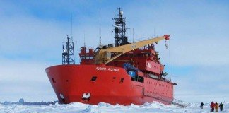Go onboard an Antarctic icebreaker to see if you like it first.
