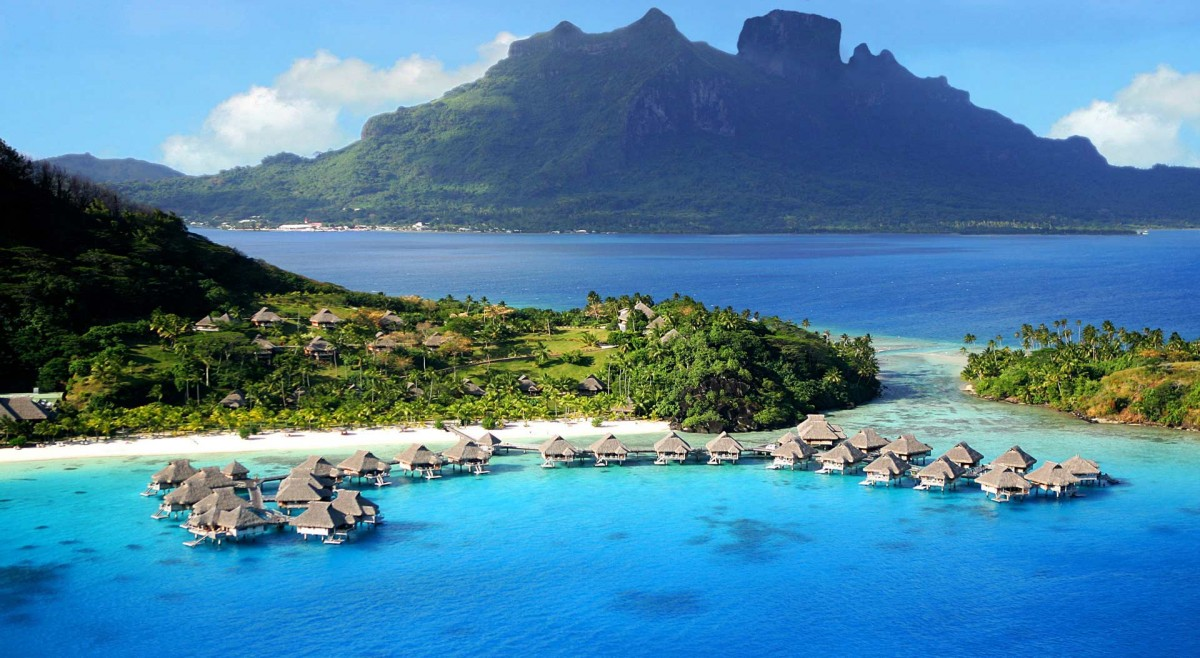The tropical waters of Moorea are a popular breeding ground for whales and dolphins.