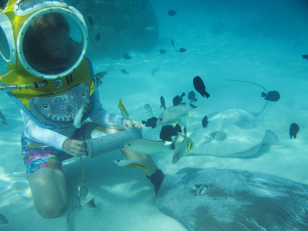View the underwater life in Bora Bora without all the rigorous scuba qualifications needed to go scuba diving.