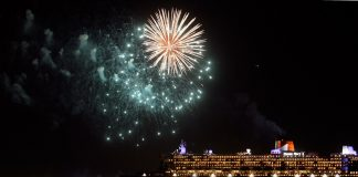 What does 2017 have in store for the world's major cruise lines?
