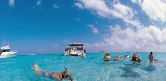 A Princess Cruises travellers enjoys some snorkelling during a shore excursion.