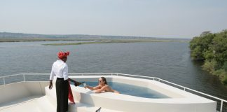Watch African wildlife from the swimming pool onboard the Zambezi Queen river cruise ship.